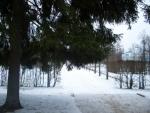 Екатерининский парк зимой (Пушкин)
